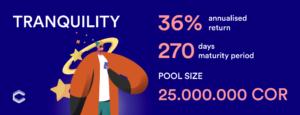 Coreto Tranquility Pool